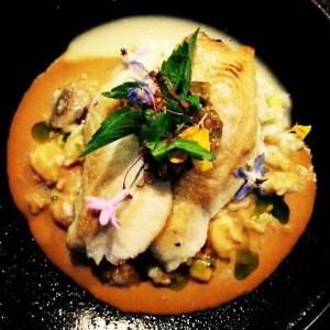 Seared Ono, shrimp risotto